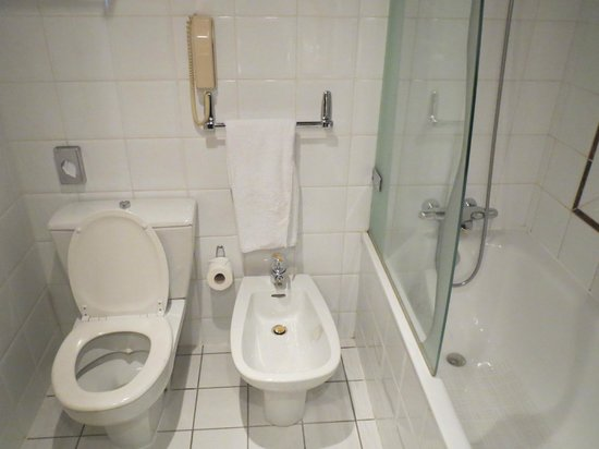 Hilton Strasbourg: Salle de bain