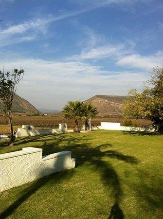 DuVon Guesthouse : du Von wine farm view from guest house