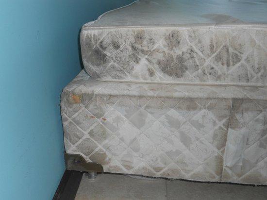 Enotel Acqua Club Porto de Galinhas: camas suplentes para as crianças