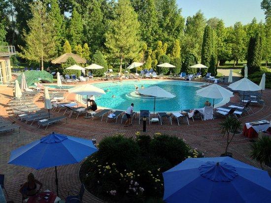 Lotus Therme Hotel & Spa: Один из бассейнов