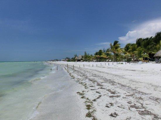 Holbox Hotel Casa las Tortugas - Petit Beach Hotel & Spa: Beachview 2