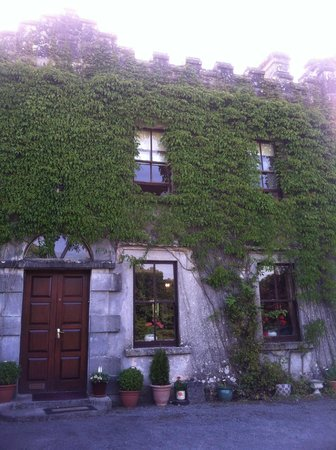 Newpark House: Front door and ivy roof -- a warm welcome to inside riches