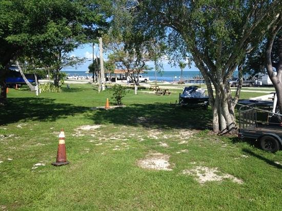 Jolly Roger RV Resort: nice view during slow season