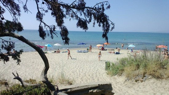 Riotorto, Italia: la spiaggia 'libera'