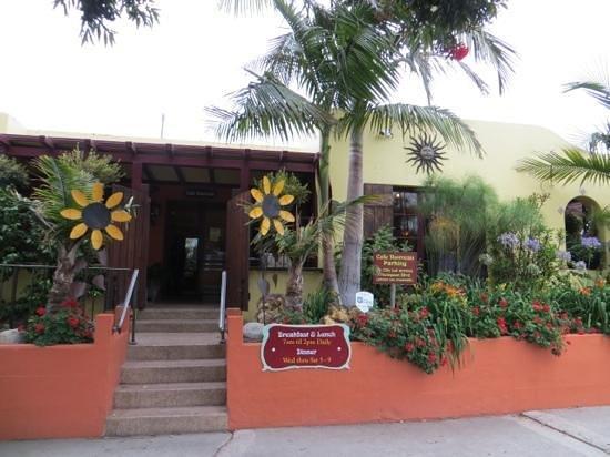Cafe Nouveau, Ventura