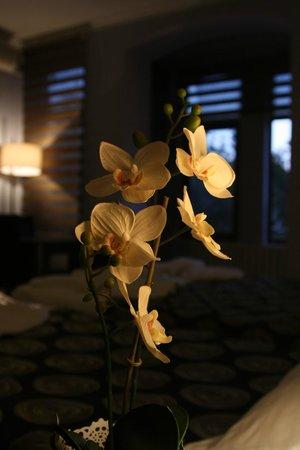 Aytuna Hotel : Triple Room-Night View
