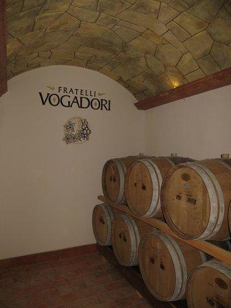 Veronaround Tours: Valpolicella Amarone Tour