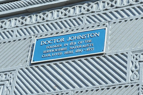 The Anchorage Guest House: Dr Johnston's plaque
