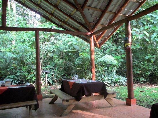 Arenal Oasis Eco Lodge & Wildlife Refuge: A view of the outdoor area where breakfast is served