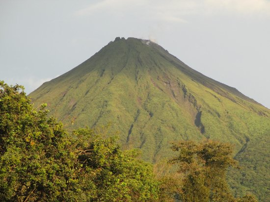 Arenal Oasis Eco Lodge & Wildlife Refuge: A morning view of Arenal, just a short walk away from the Eco Lodge
