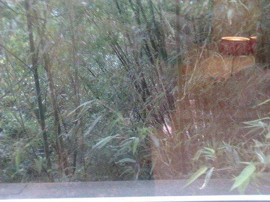 Privilege Hotel Mermoz: Vista cortile!!