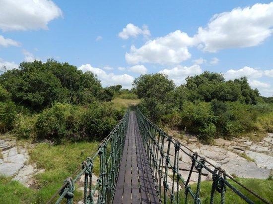 Mara Intrepids Luxury Tented Camp: Hängebrücke