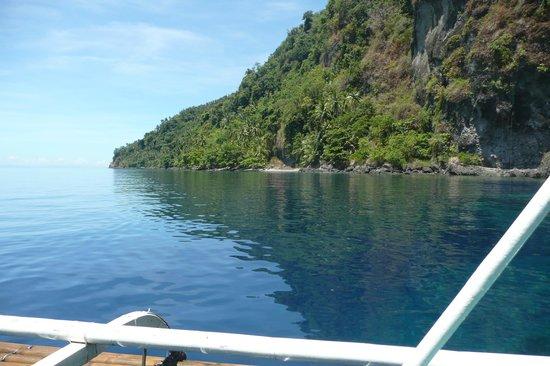 Sogod Bay Scuba Resort: Dive site, see the viz