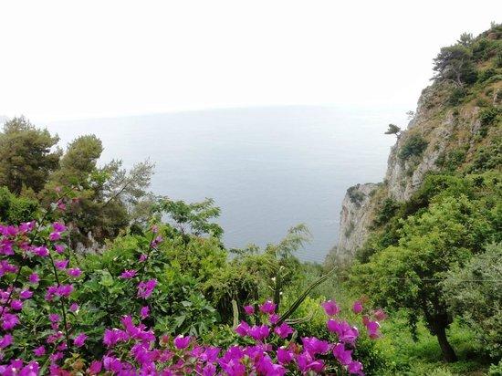 Le Grottelle: Panorama dalla terrazza
