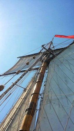 Michigan Maritime Museum: Friends Good Will mast