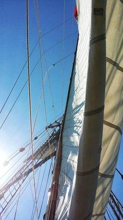 Michigan Maritime Museum: Friends Good Will sails