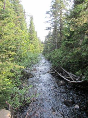 Les Chalets Spa Canada: Stream near chalet