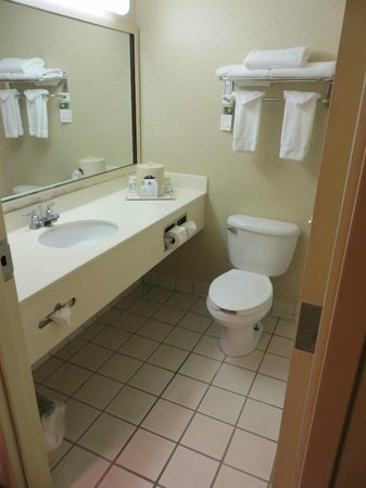 Holiday Inn Express Athens: clean
