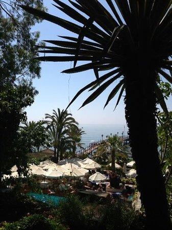 Marbella Club Grill: views