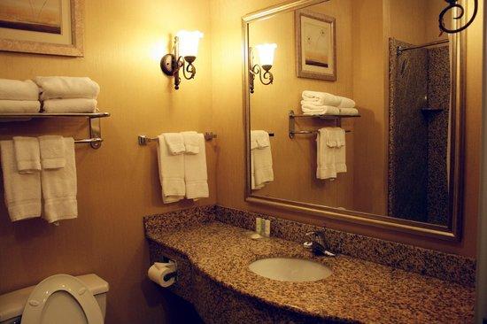 Comfort Suites: Standard Bathroom