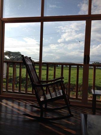 Hotel Samara Inn: My reading chair overlooking field and beach at Samara Inn