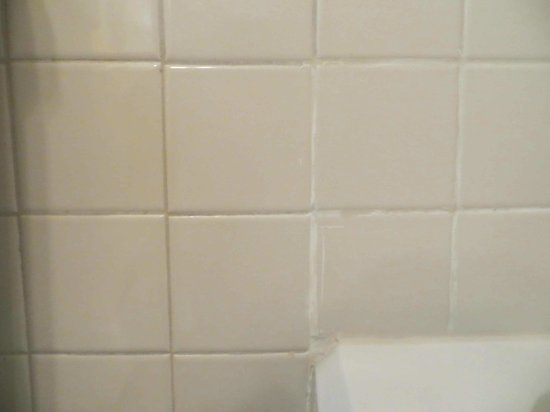 BEST WESTERN PLUS Windsor Hotel Americus : Messed up grout