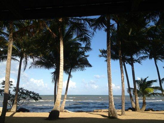 Pelican Beach - Dangriga: ocean view