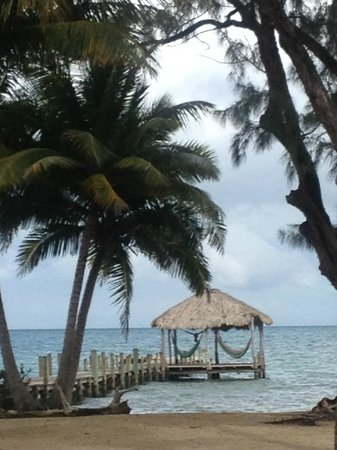 Pelican Beach - Dangriga: we all loved using the hammocks out on the pier to relax and read books