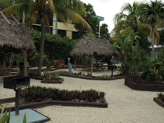 Banana Bay Resort and Marina Marathon: Picnic area