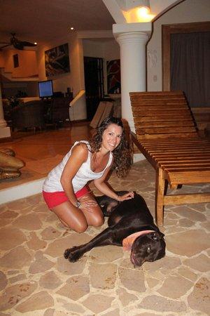 Los Altos de Eros: We loved Coco