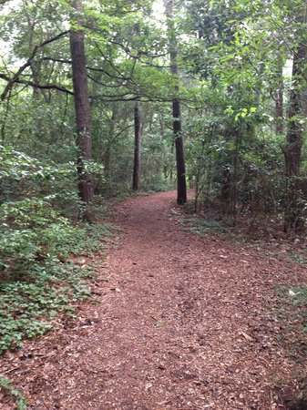 Fort Raleigh National Historic Site: Trail
