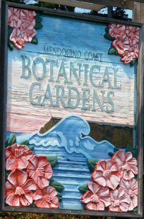 Mendocino Coast Botanical Gardens: The Botanical Gardens