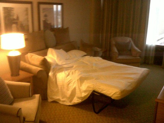 Hilton Hartford: Pull out bed from doorway.