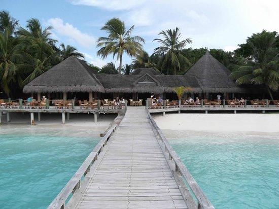 Kuramathi Island Resort: The laguna bar