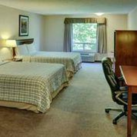 Lakeview Inn & Suites - Chetwynd: Standard Double