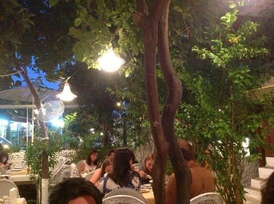 Bahce Restaurant Photo