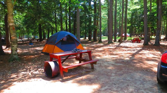 Old Orchard Beach Campground : our site