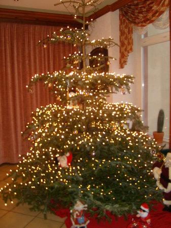 Berghotel Kockelsberg: Christmas tree in lobby area