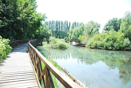 E4 - Il GiraSile - Biking Trail