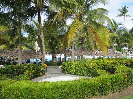 ClubHotel Riu Bachata: okolice hotelu