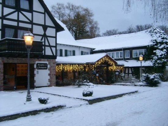 Jagdschloss Monchbruch : Christmas is close