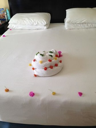 towel art birthday cake Picture of Sharm El Sheikh South Sinai