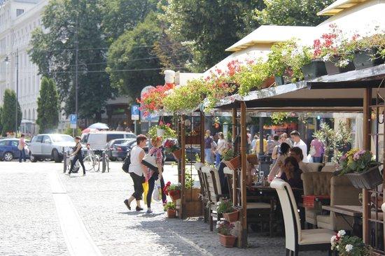 Pensiunea Casa Frieda : street view