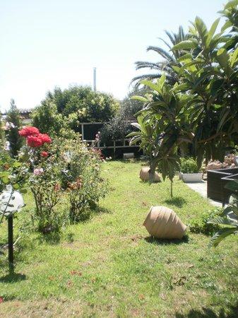 Vournelis Beach Hotel & Spa: Garden
