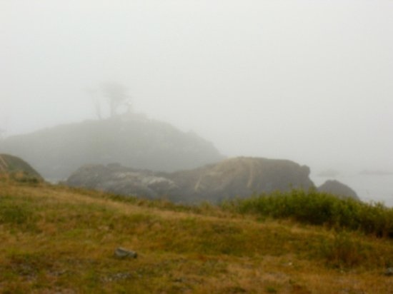 Oceanfront Lodge: Lighthouse in fog