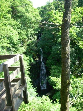 Black Spout Wood: Black Spout Falls in July