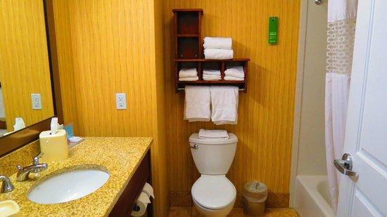 Hampton Inn by Hilton Bangor: bath