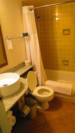 Rodd Moncton Hotel : bathroom