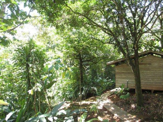 Suital Lodge: Blick von der Cabina