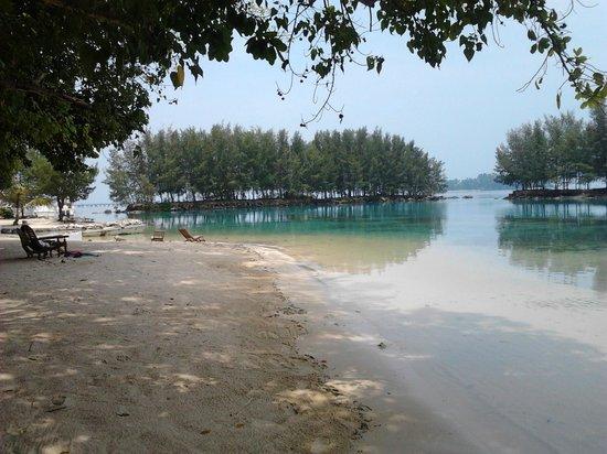 Alam Kotok Island Resort: Lagoon